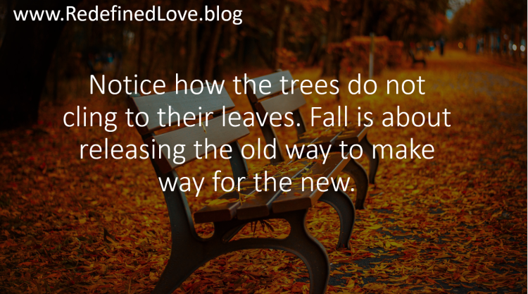 RedefinedLove fall picture.PNG