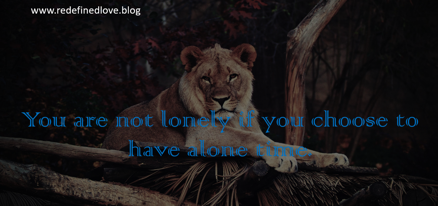 You are not lonely if you choose to.PNG